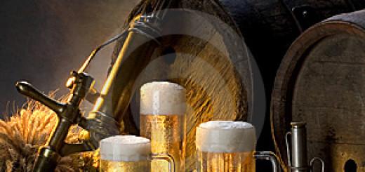 בירה לבנה שומרת על בריאות המוח