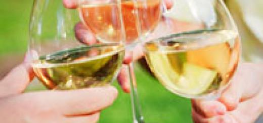 איזה יין לקנות לחג ?