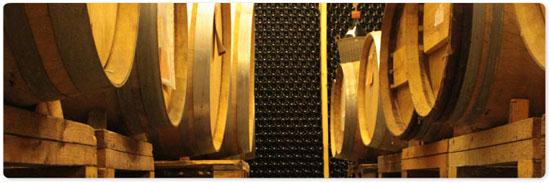 תוכנית דו שנתית ללימודי ייננות מעשית - יקב שורק ביס לעשיית יין