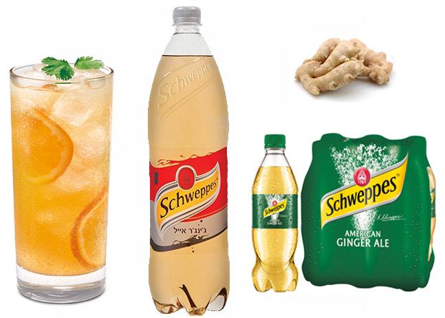 ג'ינג'ר אייל - Ginger Ale