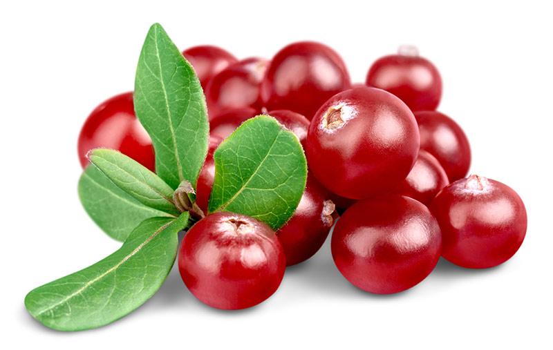 חמוציות - Cranberries